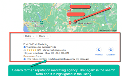What Is Google My Business and Why is It Important?